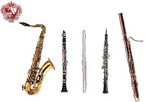 The woodwinds family