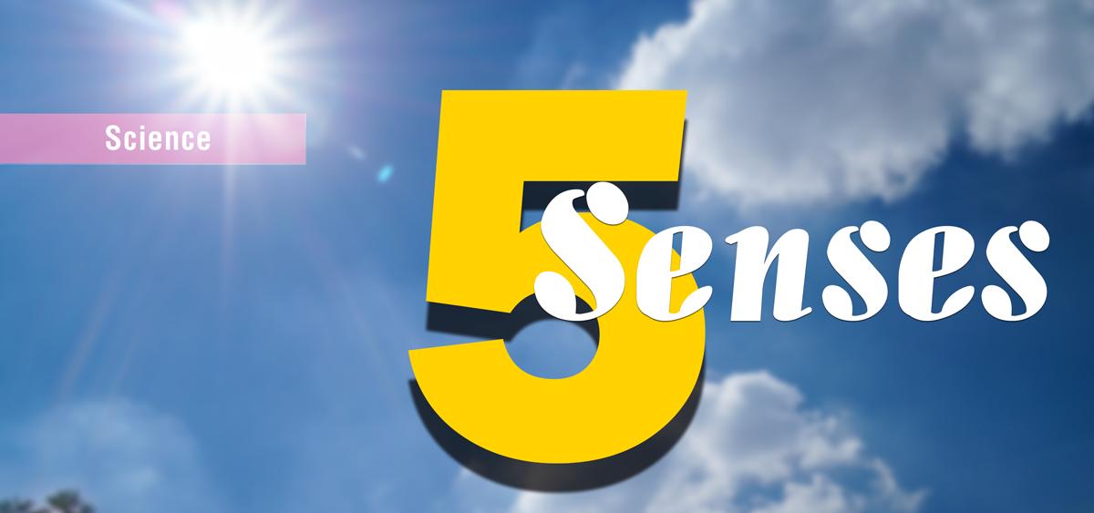 5-sences