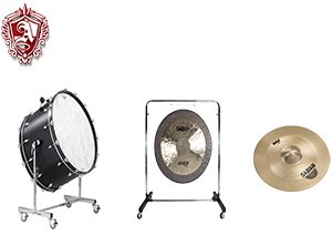 The percussion family